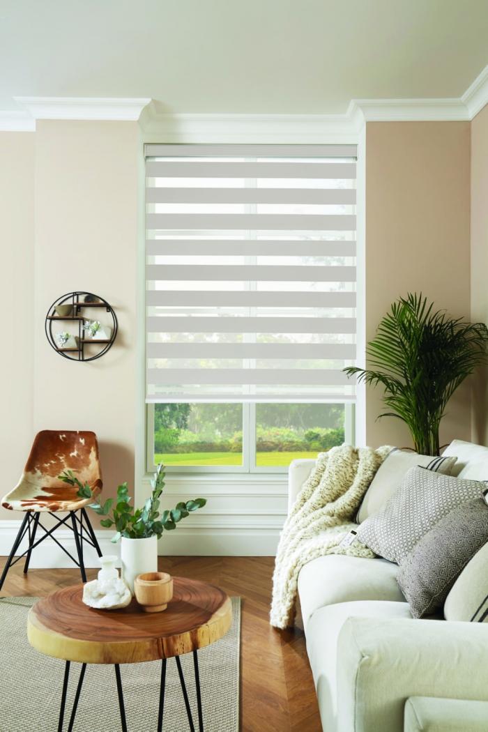 Vision-blinds